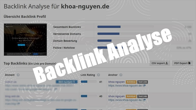 Backlink Analyse